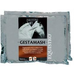 GESTAMASH PROTECT