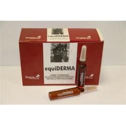EQUIDERMA - 12 fiale