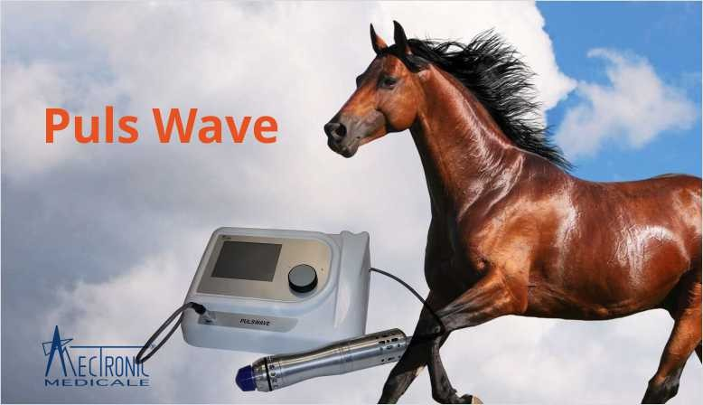 Puls Wave